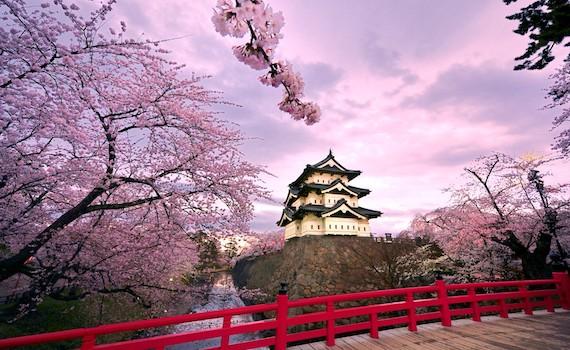 Япония – страна вежливых людей