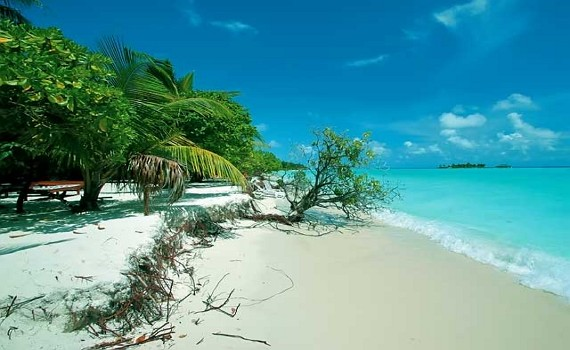 Приятный отдых на Мальдивских островах